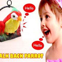 Pametni papagaj