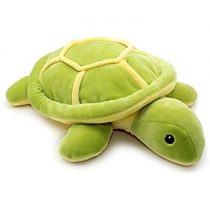 Plisana morska kornjaca
